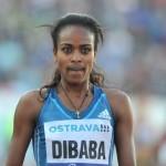 Genzebe Dibaba va tenter d'ajouter un nouveau record à son palmarès ce soir à Lausanne.