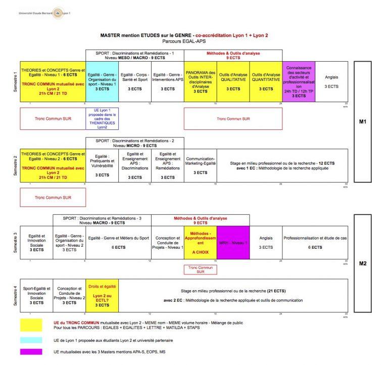Schema_type-Master-ETUDES-sur-le-GENRE-05-Juin-Master-1-768x722