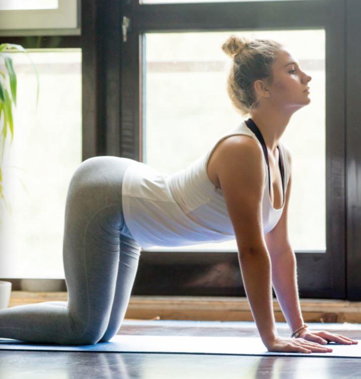 Carnet pratique de yoga : les positions de yoga clés