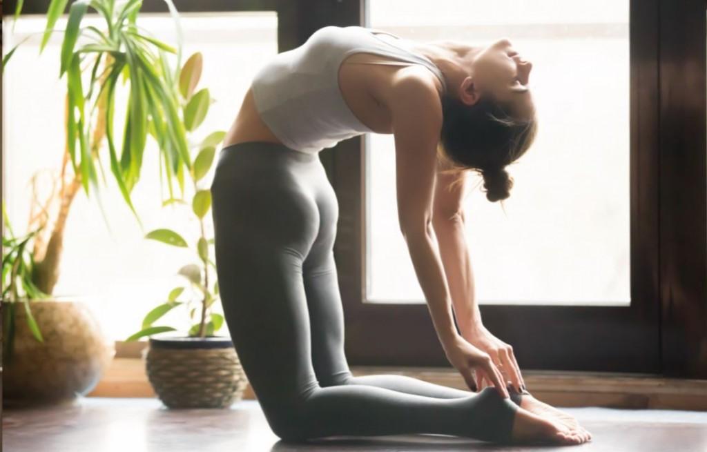 Carnet pratique de yoga : shopping yoga