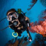 La bronzette, ça va deux minutes ! Cet été, vous avez envie d'un peu plus d'action. Alors, pourquoi ne pas tester un baptême de plongée sous-marine ?