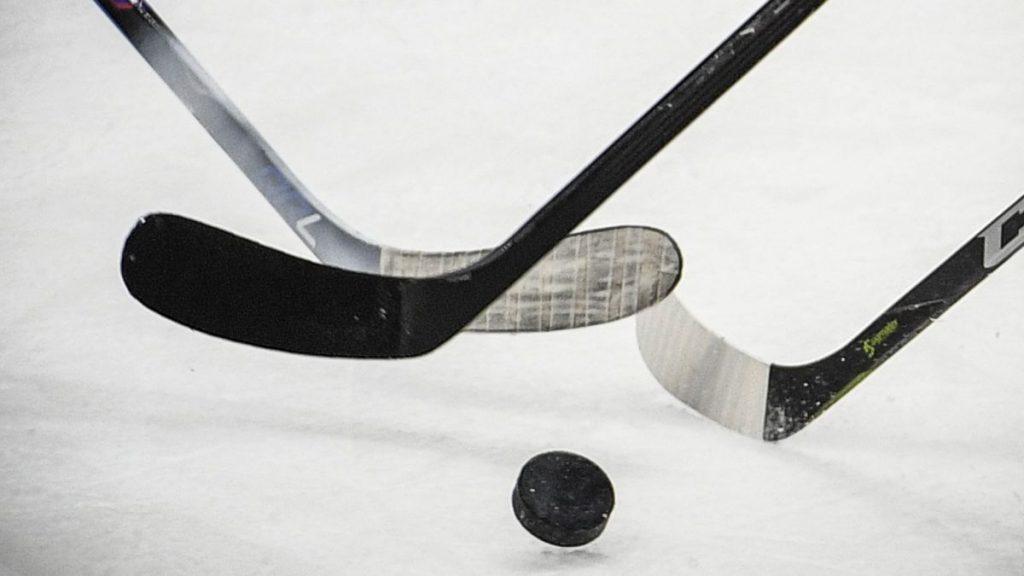 Hockey sur glace : les Bleues disputeront le Mondial-2020 à domicile