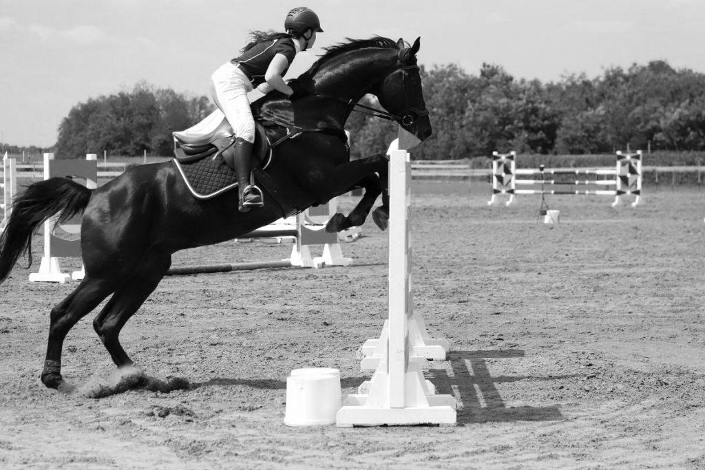 Équitation : décès d'une jeune cavalière de 22 ans au Haras du Pin