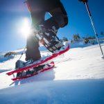 Vous en avez marre du ski ? On a la solution pour vous ! Nous vous proposons : la randonnée à raquettes (non, ce n'est pas ringard !).