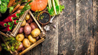 Food – Quels aliments privilégier en automne ?