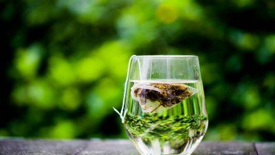 FOOD – Le thé vert, un allier efficace pour le sport !