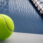 La phase finale de l'édition 2020 de la Fed Cup a été reportée à l'année prochaine en raison de la pandémie de coronavirus, a annoncé vendredi l'ITF.